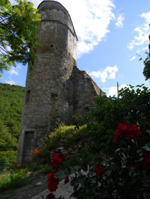 Tour du vieux château