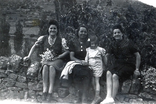 Famille GRAILLE